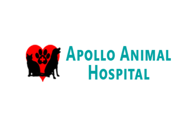 Apollo Animal Hospital