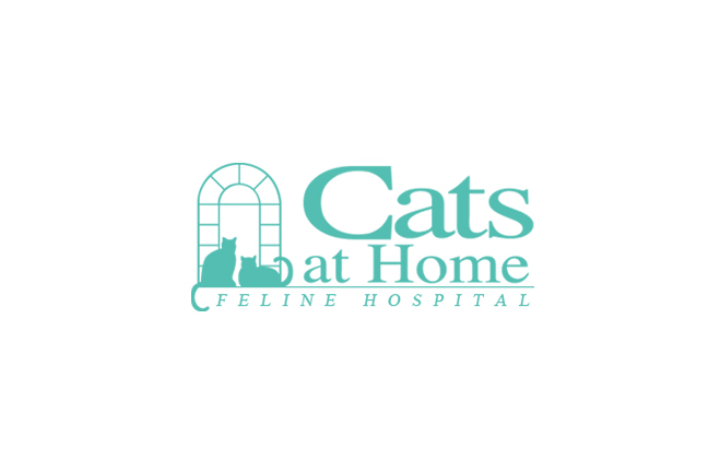 Cats at Home (Feline Hospital)