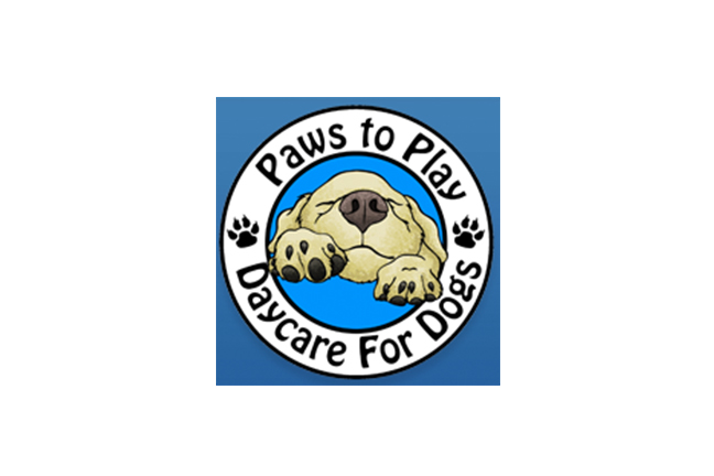 Paws to Play Day Centre for Dogs