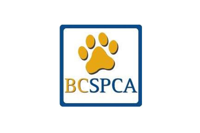 SPCA Thriftstore